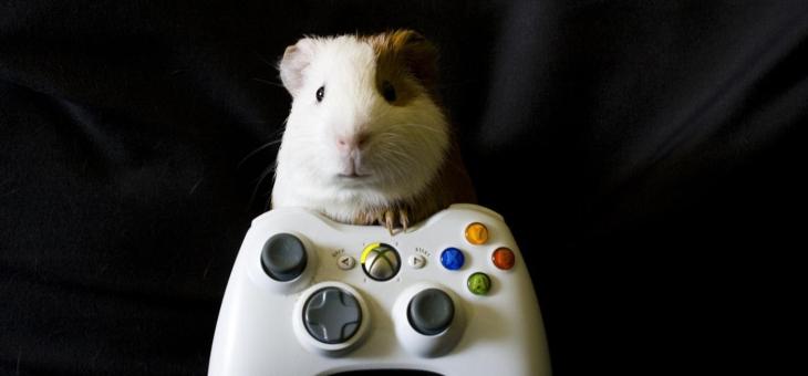 gry internetowe to mocno wcągające hobby